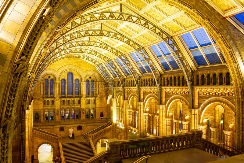 LONDRES, ROYAUME-UNI le 26 janvier 2015 - intérieur de musée d'histoire naturelle à Londres, Royaume-Uni - 26 janvier 2015 Londre photo stock