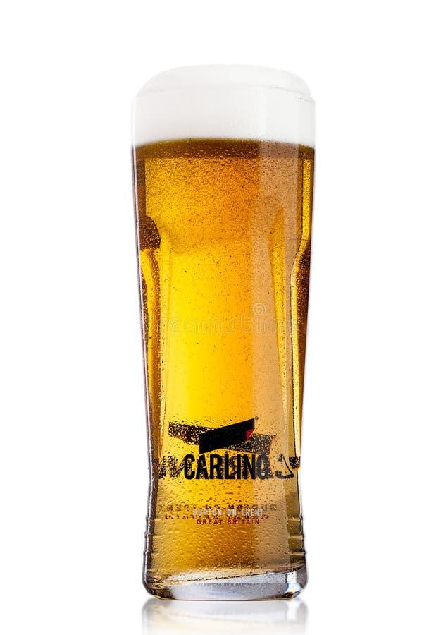 LONDYN, UK - MAJ 29, 2017: Zimny szkło Carling lager piwo na bielu Z pianą i rosą obrazy royalty free