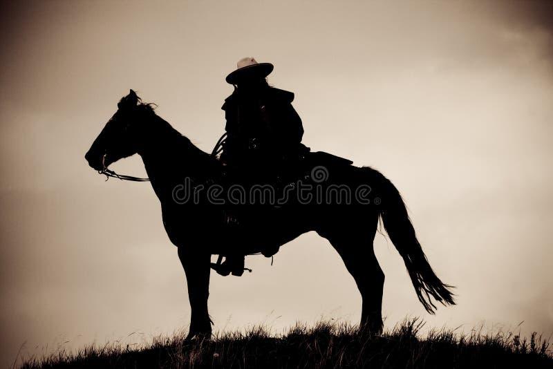 lone cowboy fotografering för bildbyråer