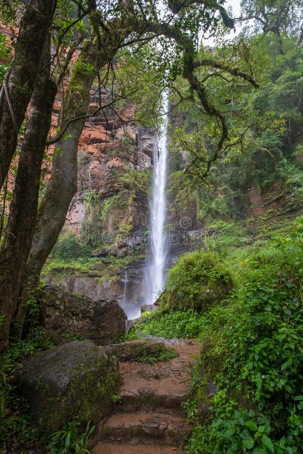 Lone Creek Falls, dramatic waterfalls in forested area in the Blyde River Canyon, Panorama Route near Sabie,South Africa royalty free stock images