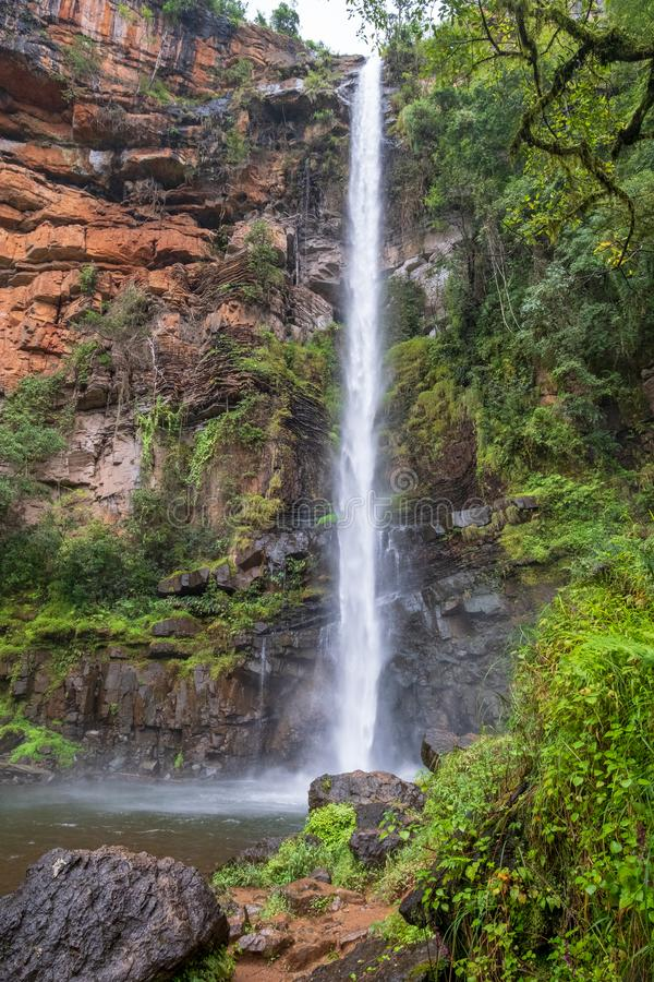 Lone Creek Falls, dramatic waterfalls in forested area in the Blyde River Canyon, Panorama Route near Sabie,South Africa royalty free stock photo