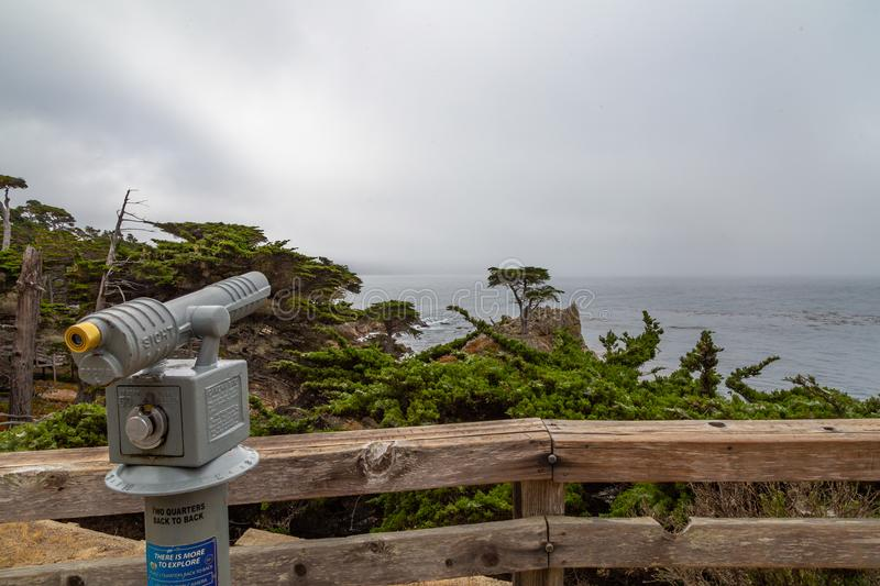 Lone Cypress at Monterey. The lone cypress tree on 17-mile drive in Monterey, California on a foggy morning royalty free stock image