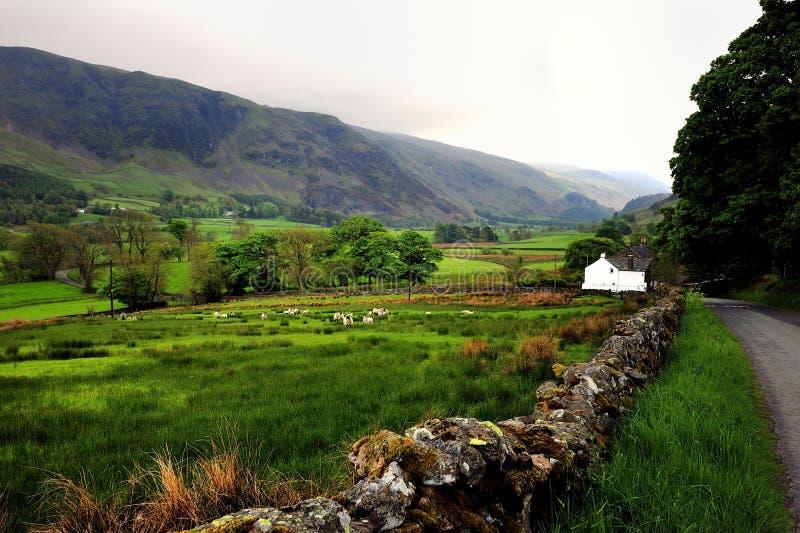Lone Farm House stock photo