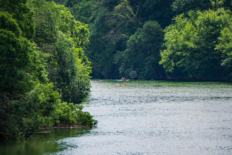 Lone Fisherman Fishing for Smallmouth Bass on Roanoke River. Roanoke County, VA, June 23rd: A lone Fisherman fishing for smallmouth bass from kayak on the stock images