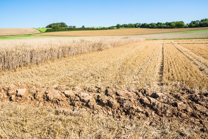 Lone furrow. Close up of a single furrow on an autumnal stubble field stock image