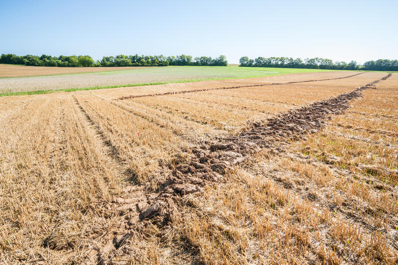 Lone furrow. Close up of a single furrow on an autumnal stubble field stock photography