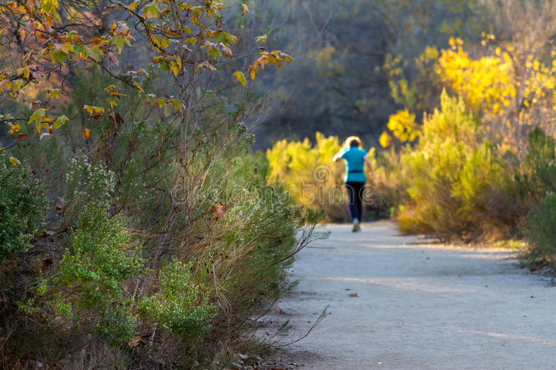 Lone Jogger royalty free stock images