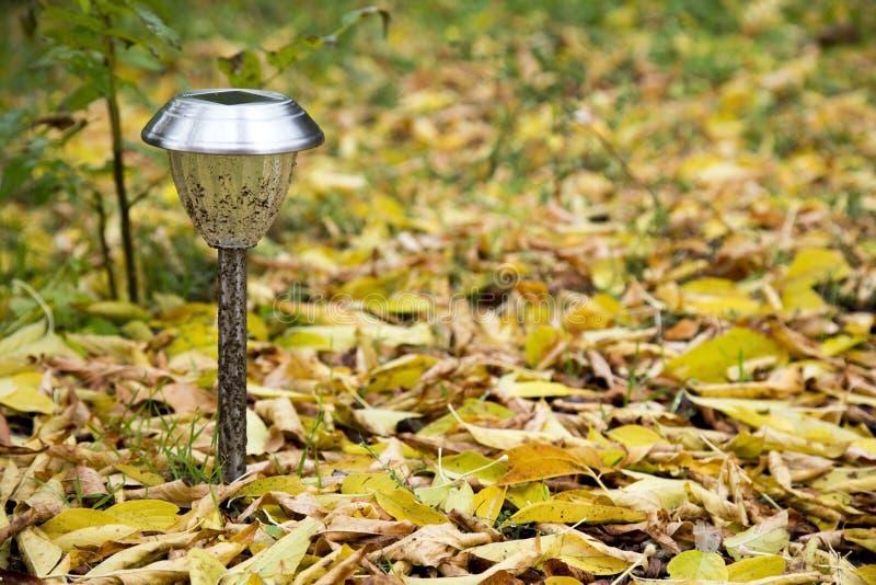 Lone lantern royalty free stock photography