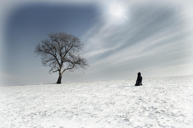 Lone man and lonely tree. In winter stock photography
