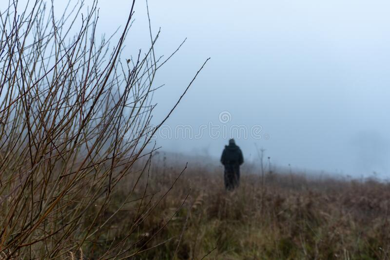 A lone man standing in the distance, out of focus. On a moody, foggy, winters day in the countryside.  stock images