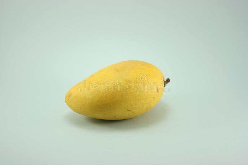 lone mango royaltyfri fotografi