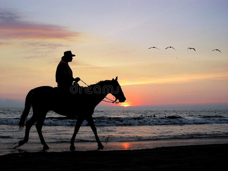 Lone rider royalty free stock images