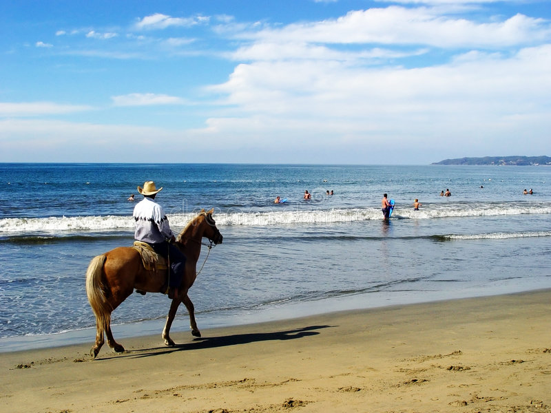 Download Lone rider stock photo. Image of travel, beach, rider, tropical - 88710