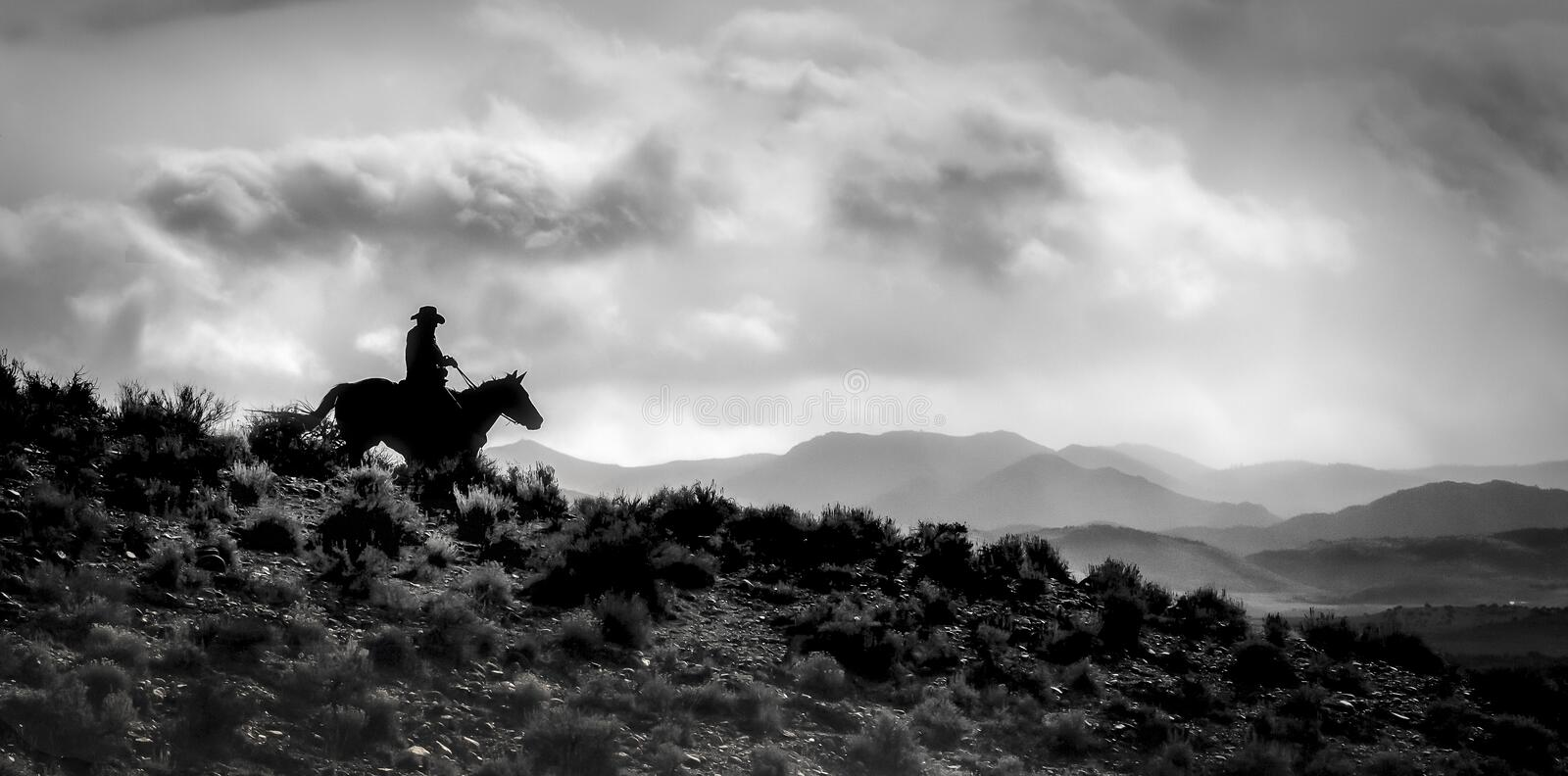 One cowboy horse Ridge Rider Silhouetted. One cowboy horse Silhouette landscape panoramic and black and white royalty free stock images