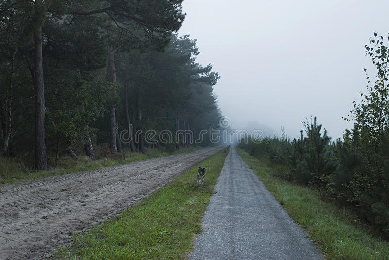 Lone sand road and bicycle road leading toward mist forest royalty free stock image