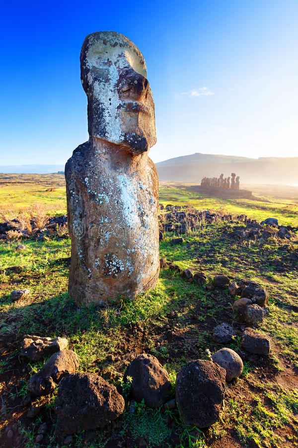 Lone standing moai in bright sunshine in Easter Island royalty free stock photography