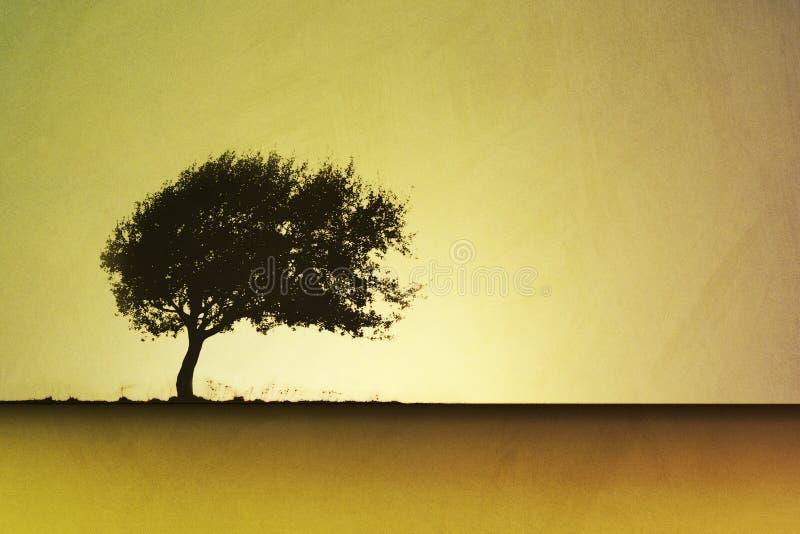 lone tree royaltyfri illustrationer
