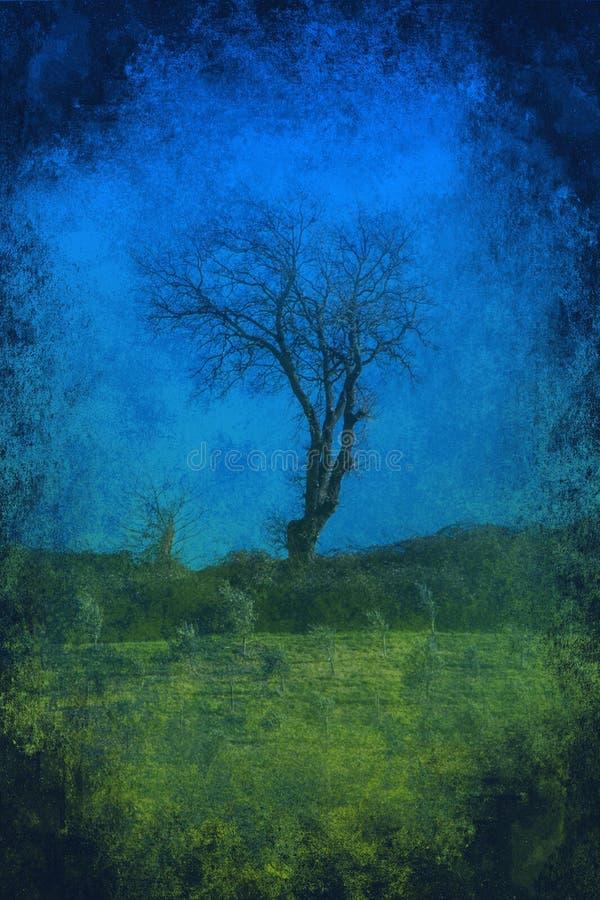 Lone tree grunge background royalty free stock photo