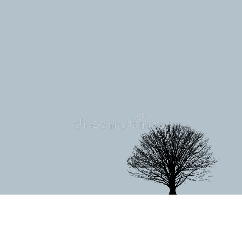 Lone Tree In The Winter Sky Royalty Free Stock Photography