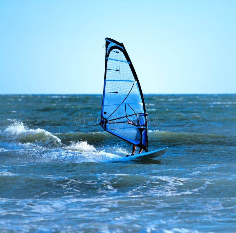 Lone windsurfer stock images