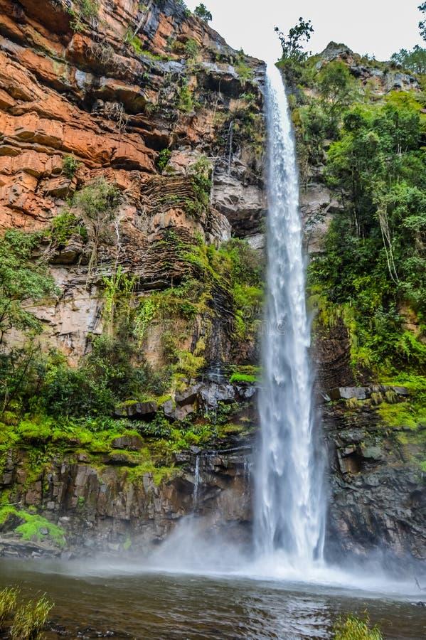 Lonecreek isolado e majestoso bonito ou quedas solitárias da angra, cachoeira em Sabie Mpumalanga South Africa imagem de stock royalty free