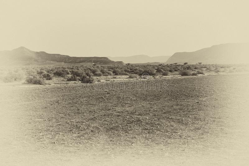 Loneliness and emptiness of the desert royalty free stock images