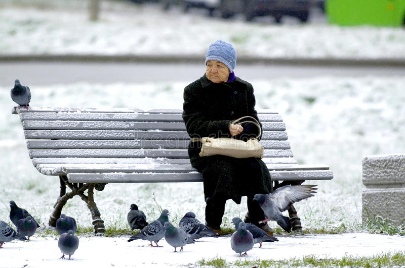 Loneliness. Russian Federation, Cherepovets. On the bench sits lonely grandma. Around the pigeons peck the bread thrown to them stock photo