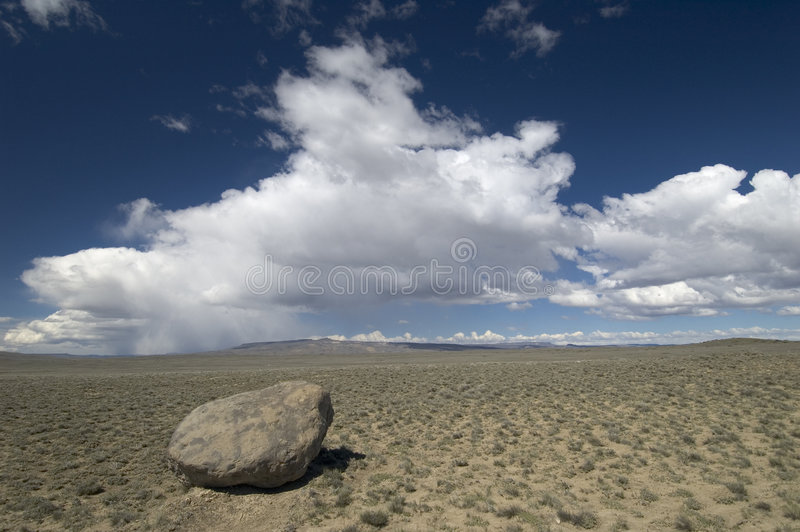 Lonely. Patagonia Desert in Argentina, Santa Cruz province royalty free stock photo