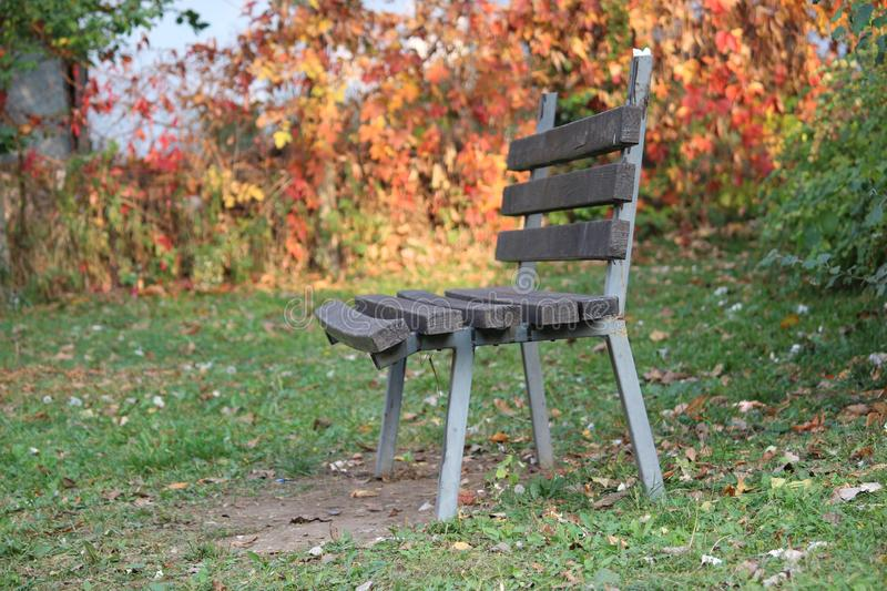 Lonely bench in the park royalty free stock photos
