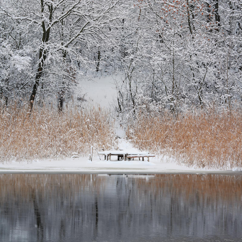 Lonely bridge. Beautiful winters morning landscape with the river stock images