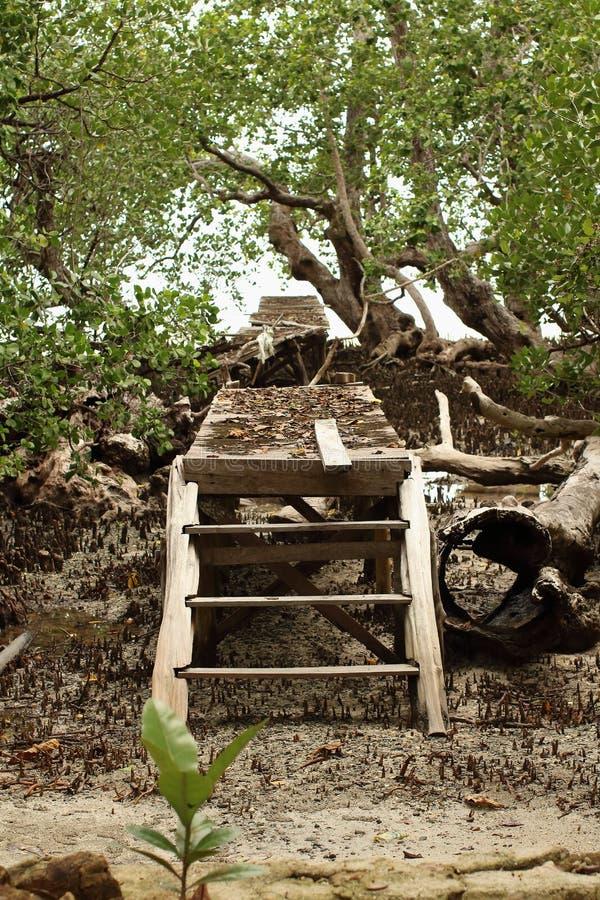 Lonely Broken Bridge stock image
