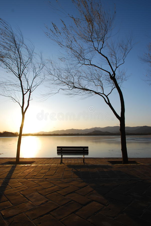 Download Lonely chair stock photo. Image of outdoor, arts, coast - 11880374
