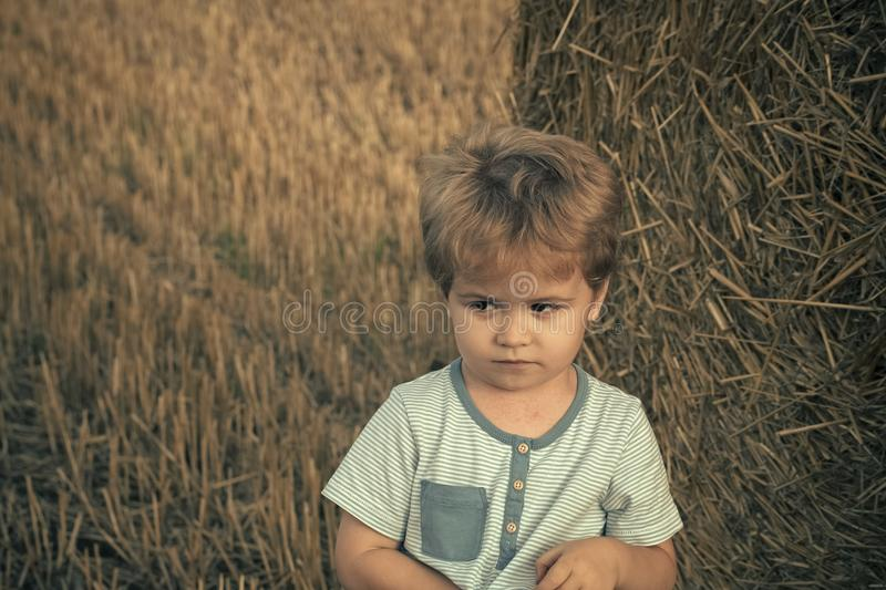 Lonely child. Unhappy child at hay bale, summer stock photos