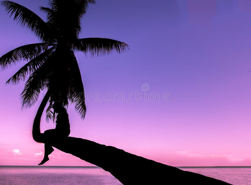 Lonely Concept, Soft Focus Color Filter Silhouette Single Thai Woman Sit Alone Waiting for Love on Curve Coconut Tree of The Beach. In Island with Copy Space in stock photo