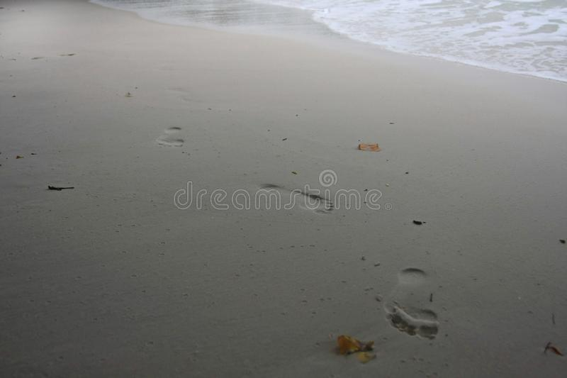 Lonely Footprint of an alone man on the beach. Thailand in 2012.  royalty free stock photography