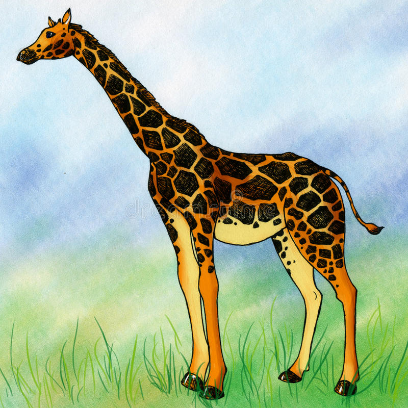 Download Lonely Giraffee In The Field Stock Illustration - Image: 38197983