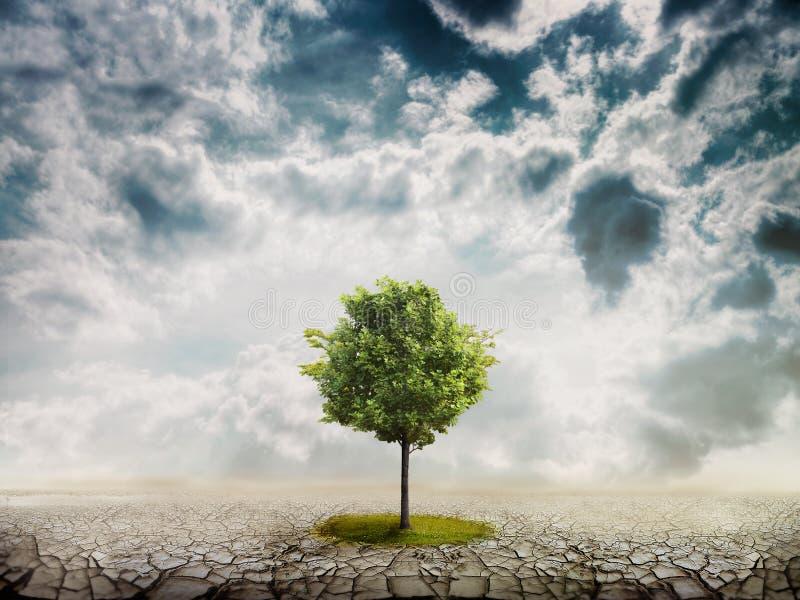 Lonely green tree stock illustration
