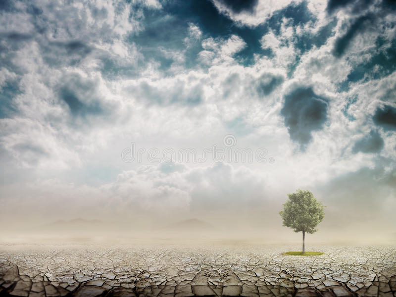 Lonely green tree vector illustration