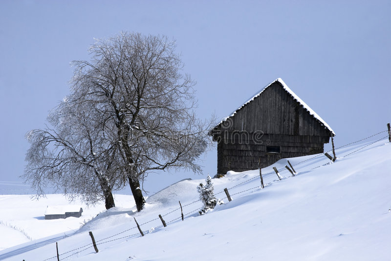 Lonely house. Winter landscape;Lonley house ad tree in a village in the mountains,in Romania royalty free stock photography