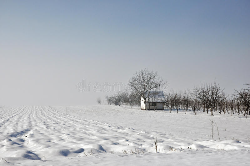 Lonely house in the winter field. royalty free stock images