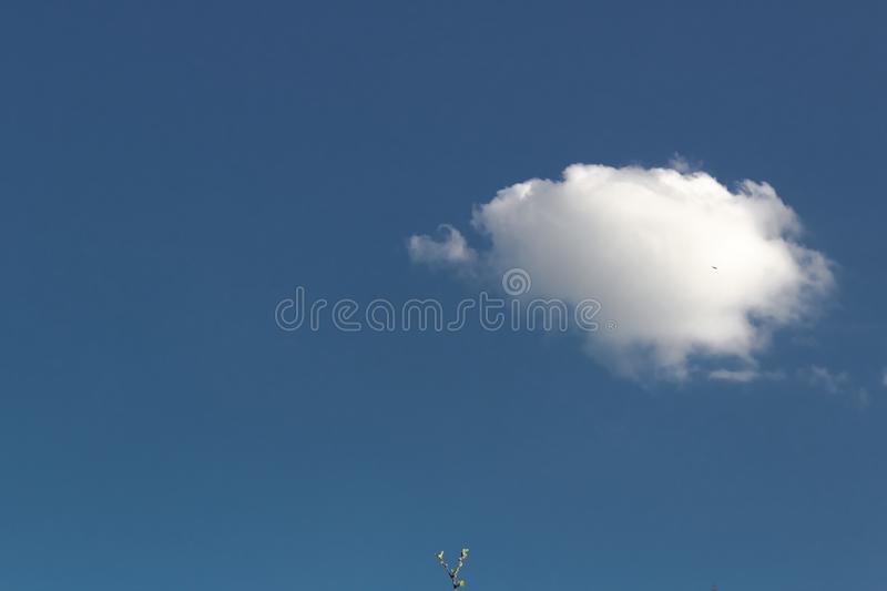 Lonely little white cloud against a blue clear sky, harbinger of storms, drought in the desert, first defender, first mover. Lonely little white cloud against a stock photos