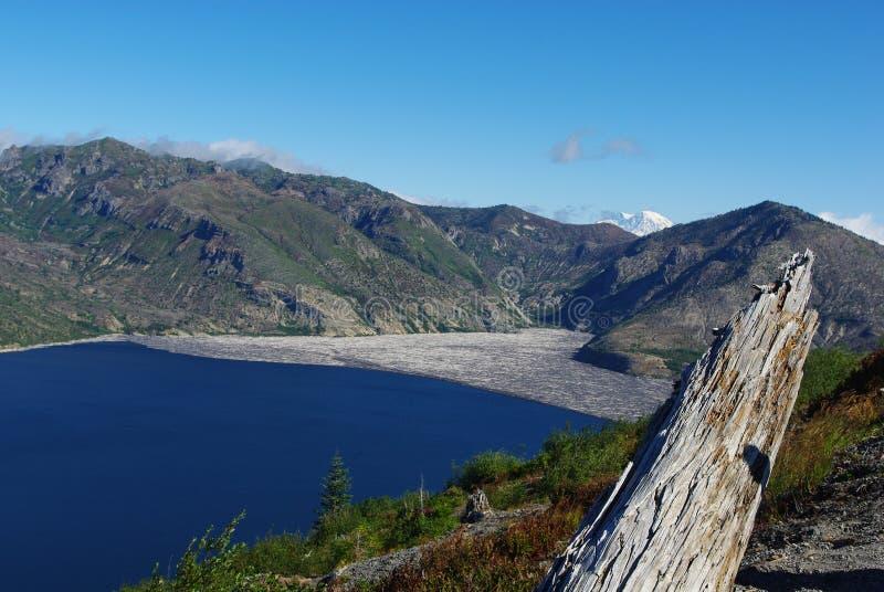 Lonely Log on Spirit Lake, Washington. Lonely Log on Spirit Lake in Washington royalty free stock photo