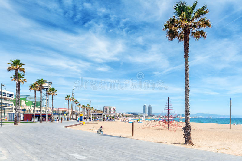 Lonely man is sitting near palm at sandy beach of Barcelona town. royalty free stock photography