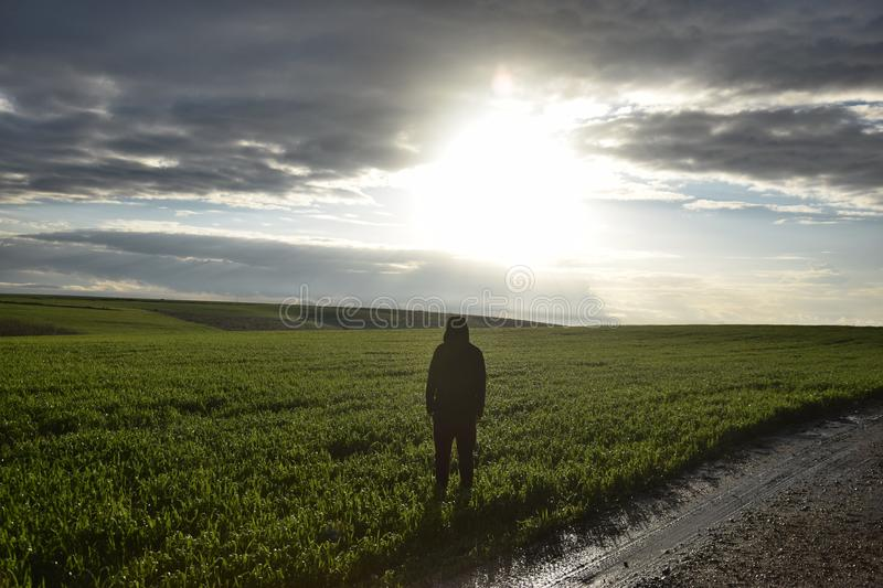 A lonely man stands in a green field at dusk stock photo
