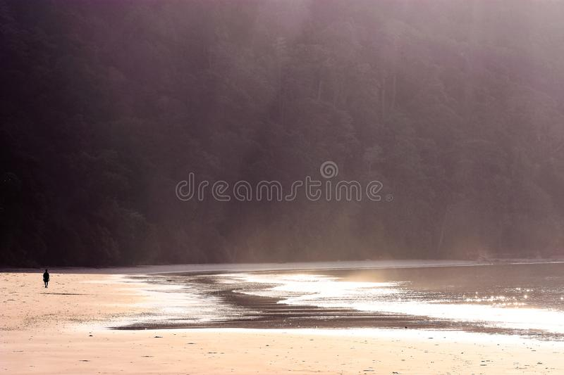 Lonely man walking at the beach stock images