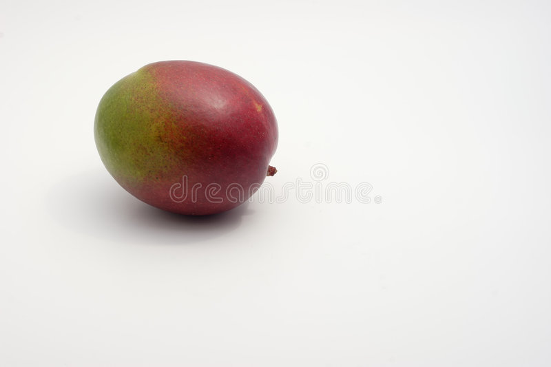 A lonely mango royalty free stock photography