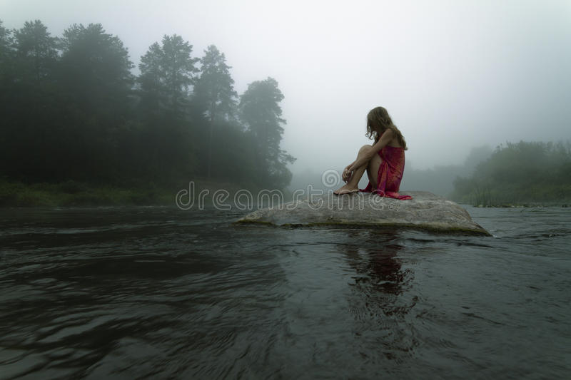 Lonely in the Mist royalty free stock photography