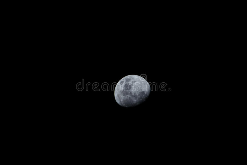 Lonely moon. stock image