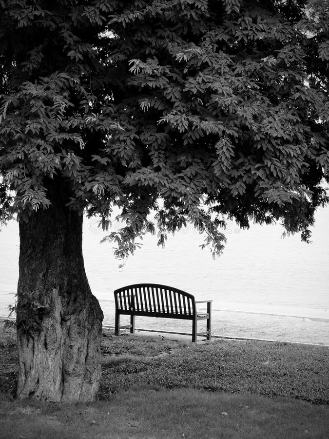 Lonely Black And White Lonely Park Ben...