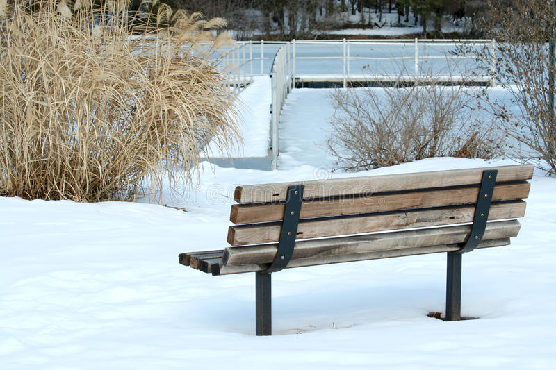 Lonely park bench in winter